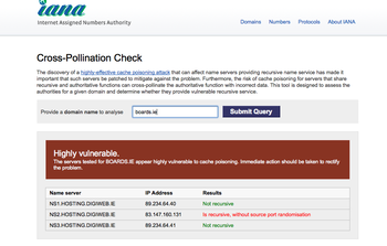 kaminsky vulnerability scan results for boards.ie
