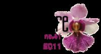 ICANN 41 Logo