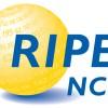 Ripe ncc-logo