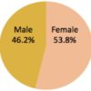 icann-staff-gender-breakdown